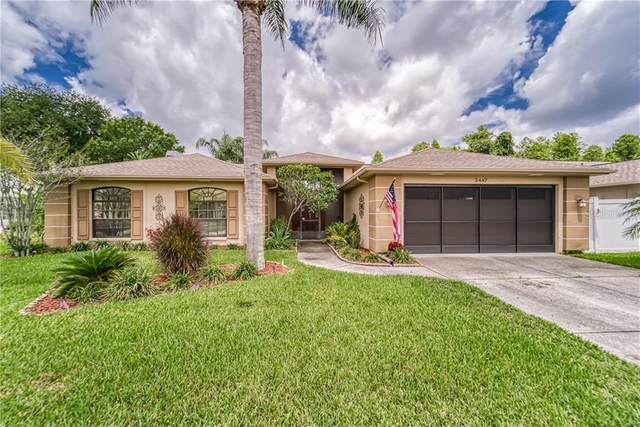 5447 El Cerro Drive, New Port Richey, FL 34655 (MLS #T3244408) :: Mark and Joni Coulter | Better Homes and Gardens
