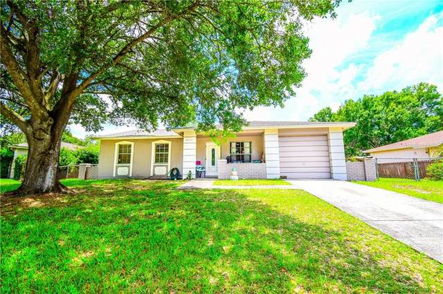 8625 Fish Lake Road, Tampa, FL 33619 (MLS #T3244409) :: Charles Rutenberg Realty