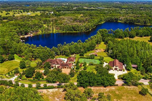 16106 Glass Lake Drive, Odessa, FL 33556 (MLS #T3244425) :: Griffin Group