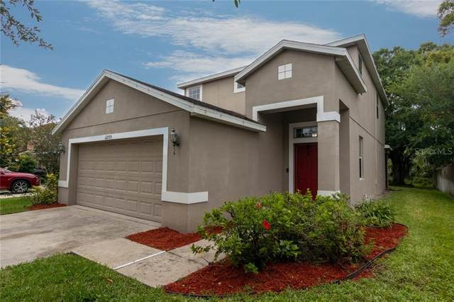 12705 Geneva Glade Drive, Riverview, FL 33578 (MLS #T3244436) :: Griffin Group