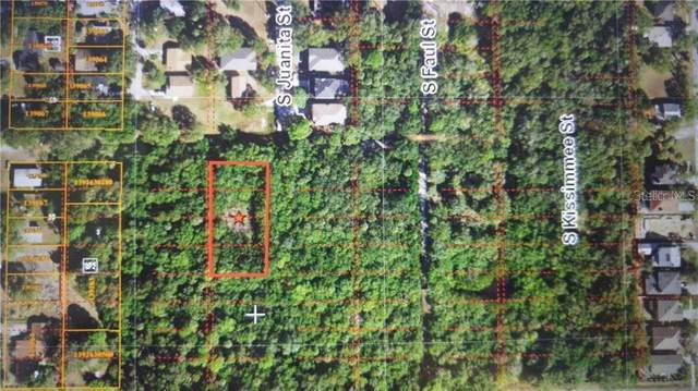 Address Not Published, Tampa, FL 33616 (MLS #T3244463) :: Homepride Realty Services