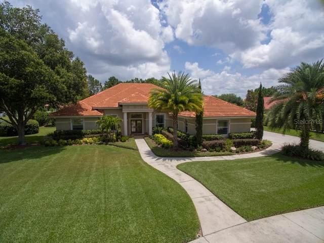 10611 Echo Lake Drive, Odessa, FL 33556 (MLS #T3244479) :: Cartwright Realty