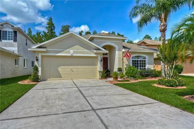 19119 Cypress Green Drive, Lutz, FL 33558 (MLS #T3244496) :: Team Buky