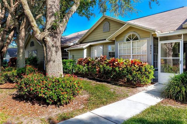 2394 Bentley Drive, Palm Harbor, FL 34684 (MLS #T3244519) :: Burwell Real Estate
