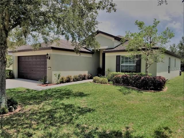 1044 Hill Flower Drive, Brooksville, FL 34604 (MLS #T3244548) :: EXIT King Realty