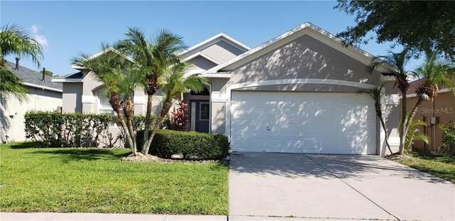 9506 Charleston Lake Drive, Tampa, FL 33635 (MLS #T3244551) :: The Figueroa Team