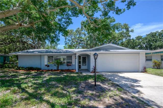1420 San Charles Drive, Dunedin, FL 34698 (MLS #T3244556) :: Burwell Real Estate