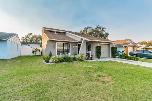 12415 Mondragon Drive, Tampa, FL 33625 (MLS #T3244571) :: Cartwright Realty