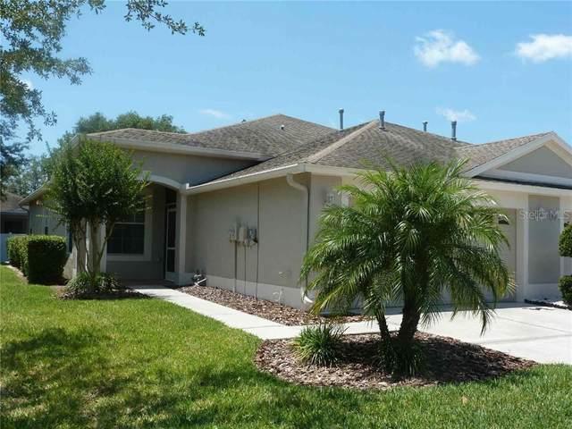 30946 Whitlock Drive, Wesley Chapel, FL 33543 (MLS #T3244582) :: Baird Realty Group