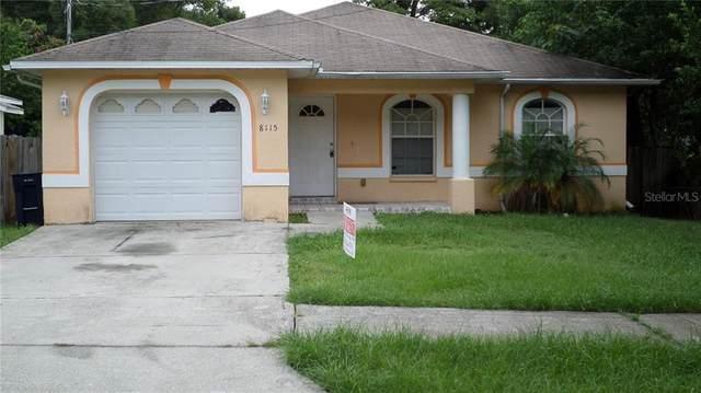 8115 N Hillsborough Lane, Tampa, FL 33604 (MLS #T3244631) :: Rabell Realty Group