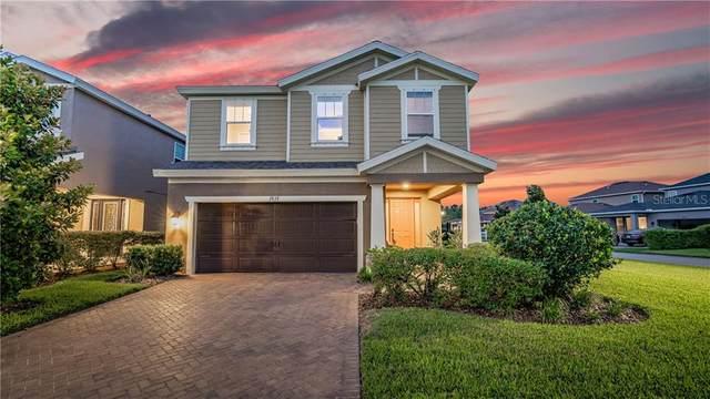 3937 Balcony Breeze Drive, Land O Lakes, FL 34638 (MLS #T3244654) :: Cartwright Realty