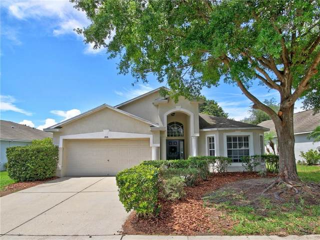 11016 Lakeside Vista Drive, Riverview, FL 33569 (MLS #T3244686) :: Cartwright Realty