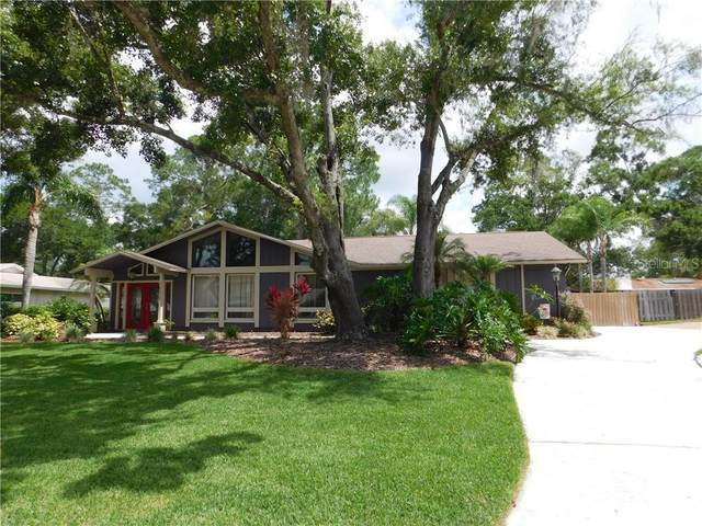 6610 Maybole Place, Temple Terrace, FL 33617 (MLS #T3244688) :: Homepride Realty Services