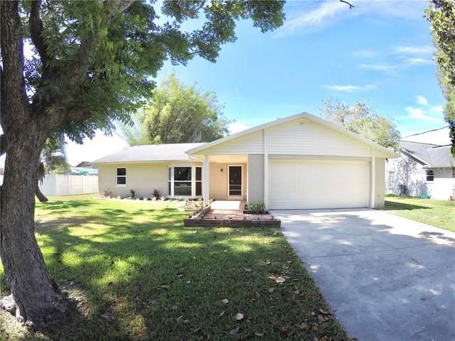 904 Bama Road, Brandon, FL 33511 (MLS #T3244699) :: Griffin Group