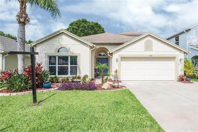 3138 Sunwatch Drive, Wesley Chapel, FL 33544 (MLS #T3244710) :: Team Bohannon Keller Williams, Tampa Properties