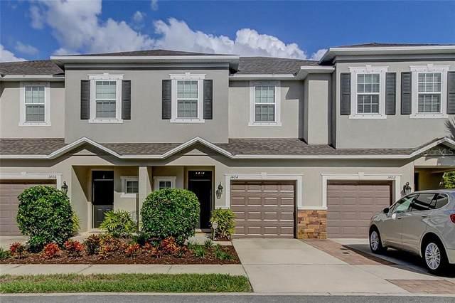 1404 Syrah Drive, Oldsmar, FL 34677 (MLS #T3244724) :: The Figueroa Team