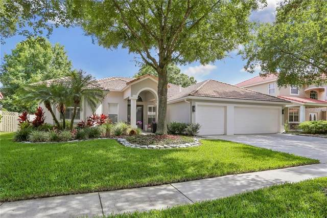 18136 Regents Square Drive, Tampa, FL 33647 (MLS #T3244744) :: Cartwright Realty