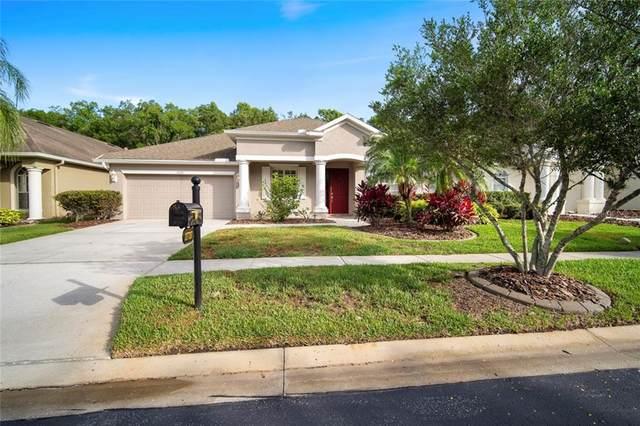 27737 Kirkwood Circle, Wesley Chapel, FL 33544 (MLS #T3244757) :: Cartwright Realty