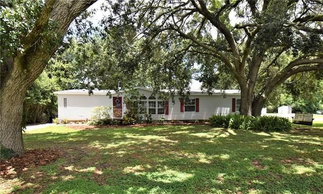 6970 Fort King Road, Zephyrhills, FL 33541 (MLS #T3244760) :: Griffin Group