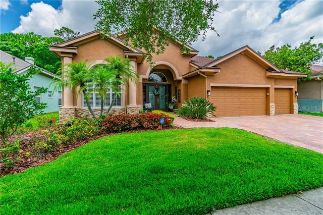 10633 Tavistock Drive, Tampa, FL 33626 (MLS #T3244769) :: Team Bohannon Keller Williams, Tampa Properties