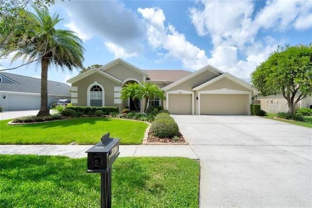 9107 Brindlewood Drive, Odessa, FL 33556 (MLS #T3244774) :: Griffin Group