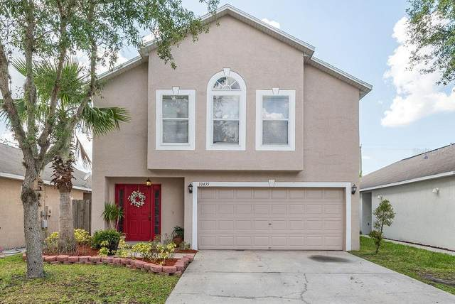 10435 Opus Drive, Riverview, FL 33579 (MLS #T3244809) :: The Duncan Duo Team