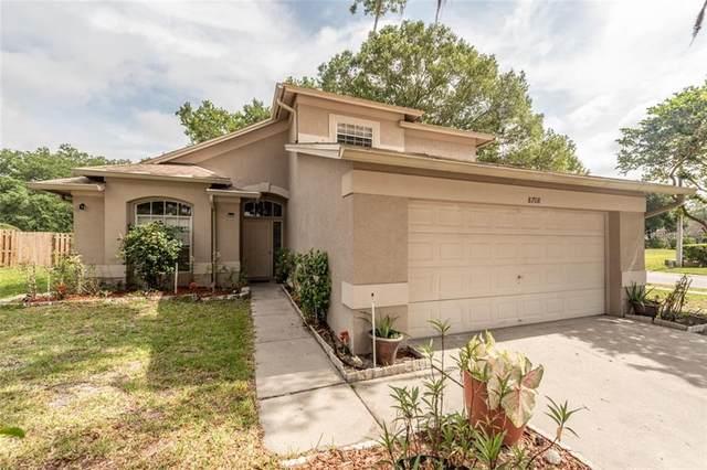 8708 Terra Oaks Road, Temple Terrace, FL 33637 (MLS #T3244825) :: Team Borham at Keller Williams Realty