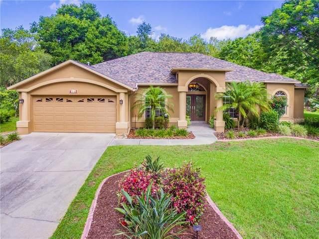 8739 Whispering Oaks Trail, New Port Richey, FL 34654 (MLS #T3244829) :: Team Buky