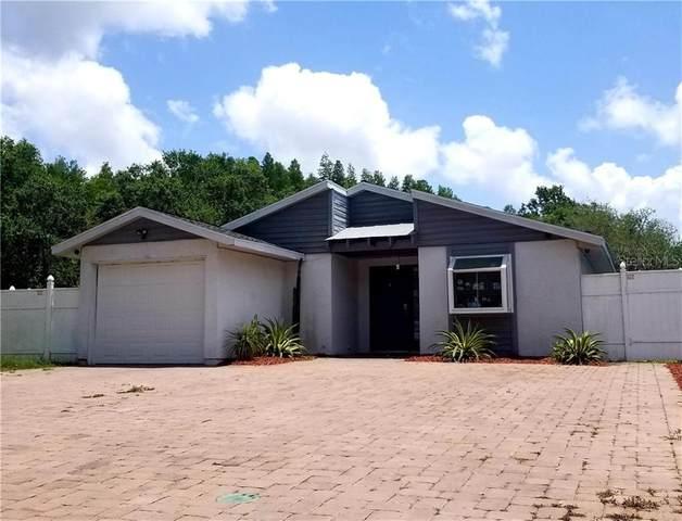 12227 Hidden Brook Drive, Tampa, FL 33624 (MLS #T3244850) :: Lucido Global