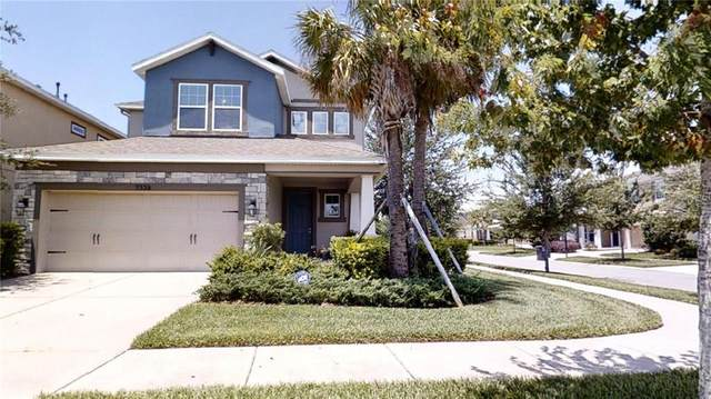 7328 Meeting House Lane, Apollo Beach, FL 33572 (MLS #T3244882) :: Rabell Realty Group