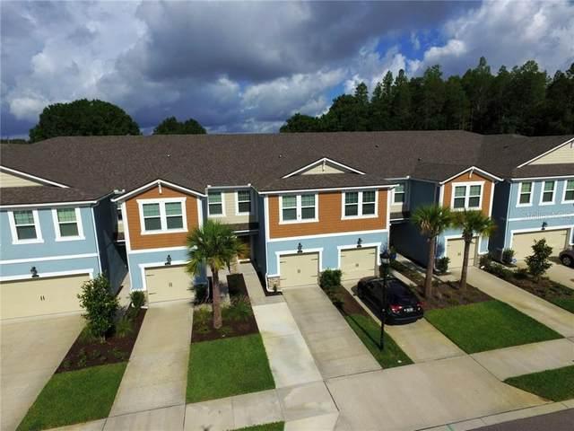 17810 Althea Blue Place, Lutz, FL 33558 (MLS #T3244886) :: Team Buky
