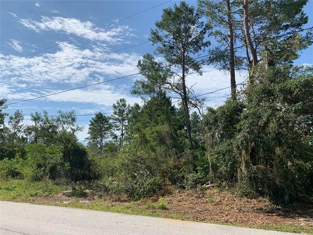 0 Valimar Road, New Port Richey, FL 34654 (MLS #T3244898) :: Pepine Realty