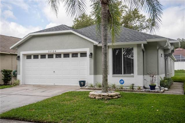 18124 Canal Pointe Street, Tampa, FL 33647 (MLS #T3244920) :: The Paxton Group