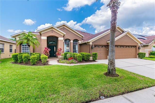 12430 Bristol Commons Circle, Tampa, FL 33626 (MLS #T3244921) :: Team Bohannon Keller Williams, Tampa Properties