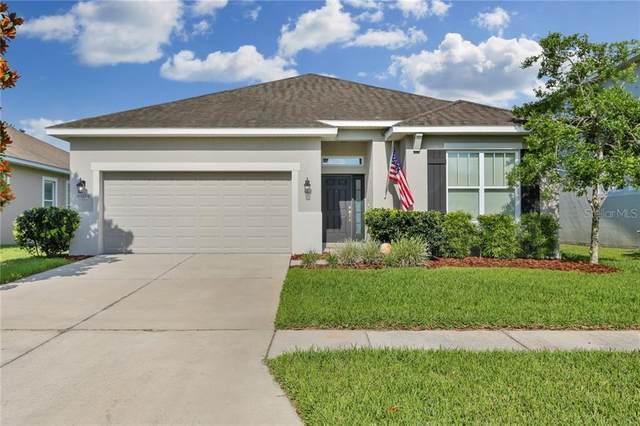 7544 Bulls Head Drive, Wesley Chapel, FL 33545 (MLS #T3244924) :: Cartwright Realty
