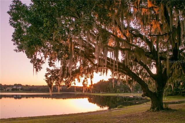 LOT 10 Clayton Road, Dade City, FL 33523 (MLS #T3244966) :: Cartwright Realty