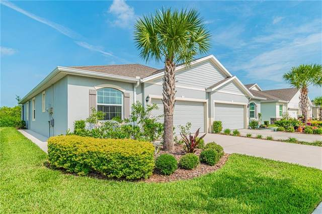 32911 Windelstraw Drive, Wesley Chapel, FL 33545 (MLS #T3245005) :: Premier Home Experts