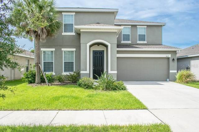 8117 Rothbury Hills Place, Gibsonton, FL 33534 (MLS #T3245028) :: Cartwright Realty