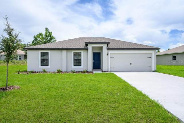1613 Orne Street, Mascotte, FL 34753 (MLS #T3245052) :: Charles Rutenberg Realty
