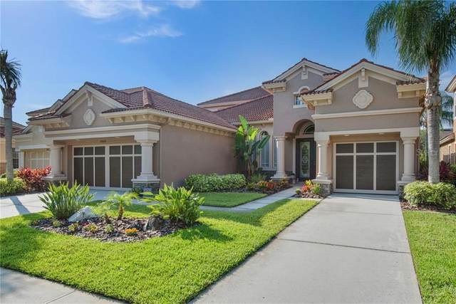 11608 Bristol Chase Drive, Tampa, FL 33626 (MLS #T3245065) :: Griffin Group