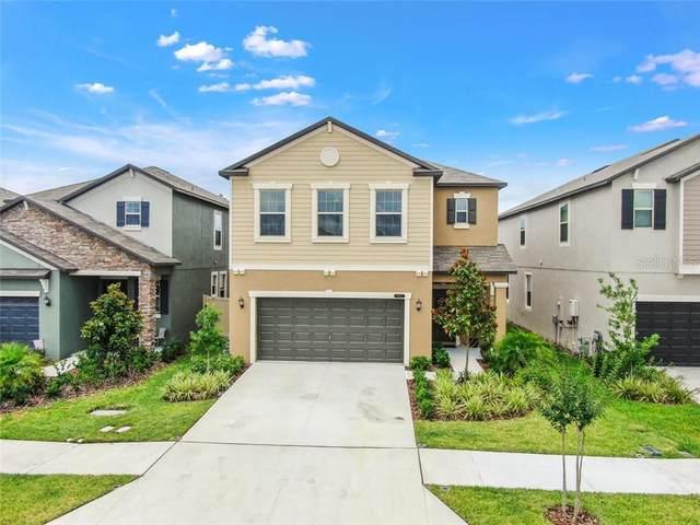 8955 Shadyside Lane, Land O Lakes, FL 34637 (MLS #T3245073) :: Premier Home Experts