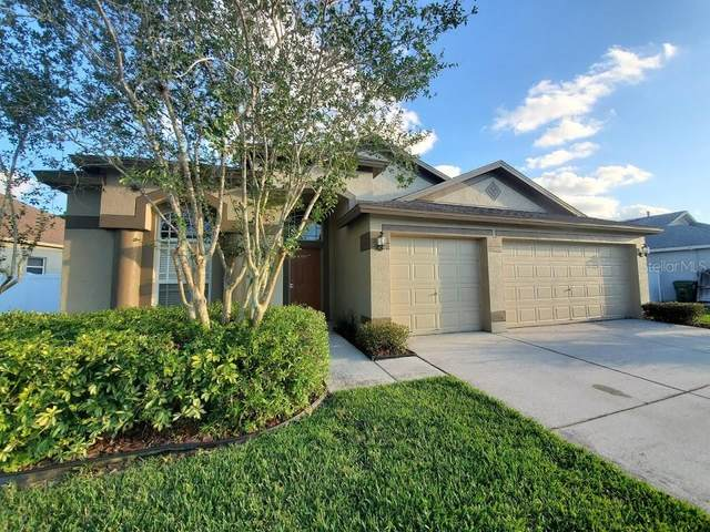 4736 Carroway Drive, Land O Lakes, FL 34639 (MLS #T3245082) :: Premier Home Experts