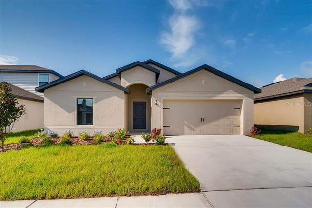 12614 Impatiens Street, Spring Hill, FL 34609 (MLS #T3245085) :: Team Bohannon Keller Williams, Tampa Properties