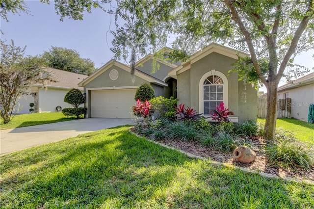 19504 Morden Blush Drive, Lutz, FL 33558 (MLS #T3245095) :: Cartwright Realty