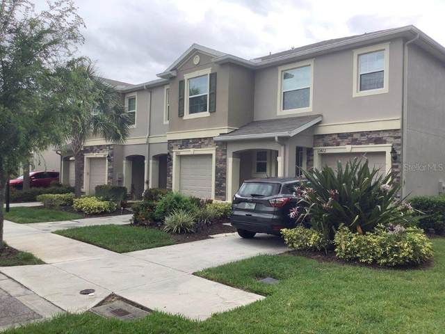 10420 Butterfly Wing Court, Riverview, FL 33578 (MLS #T3245126) :: The Duncan Duo Team