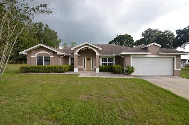36836 Foxglove Avenue, Dade City, FL 33523 (MLS #T3245140) :: Griffin Group