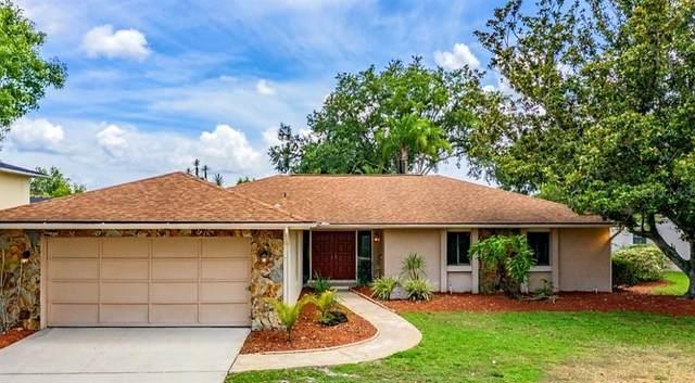 335 Cypress Creek Circle, Oldsmar, FL 34677 (MLS #T3245142) :: Delgado Home Team at Keller Williams