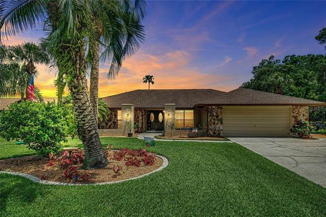 22514 Shoreside Drive, Land O Lakes, FL 34639 (MLS #T3245156) :: Team Bohannon Keller Williams, Tampa Properties