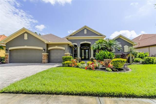 1546 El Pardo Drive, Trinity, FL 34655 (MLS #T3245177) :: Team Bohannon Keller Williams, Tampa Properties