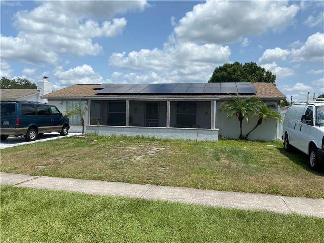 8233 Donaldson Drive, Tampa, FL 33615 (MLS #T3245180) :: Team Borham at Keller Williams Realty